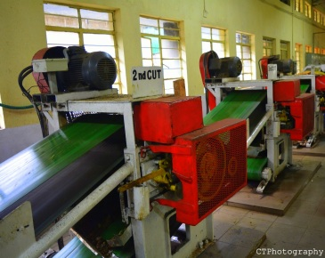 tea making process tea museum munnar