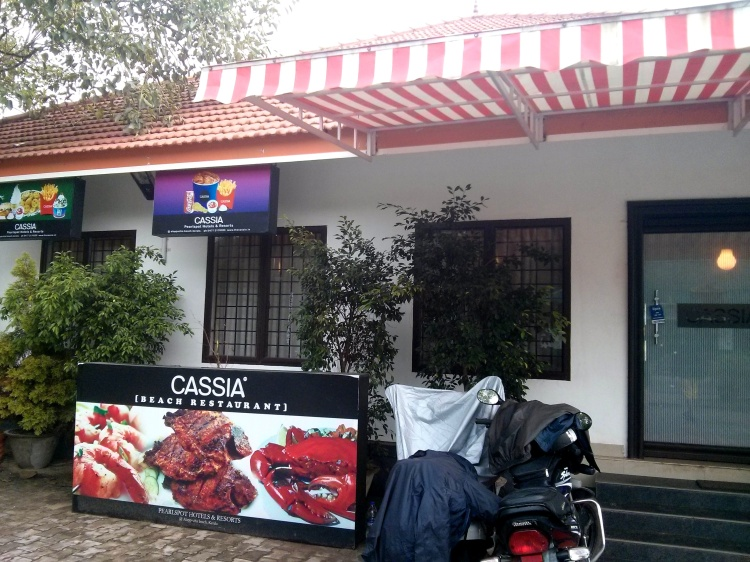 cassia alleppey